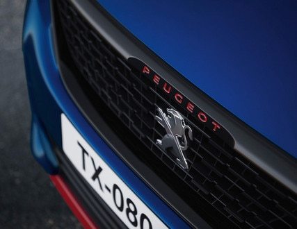 PEUGEOT 308 GTi grille